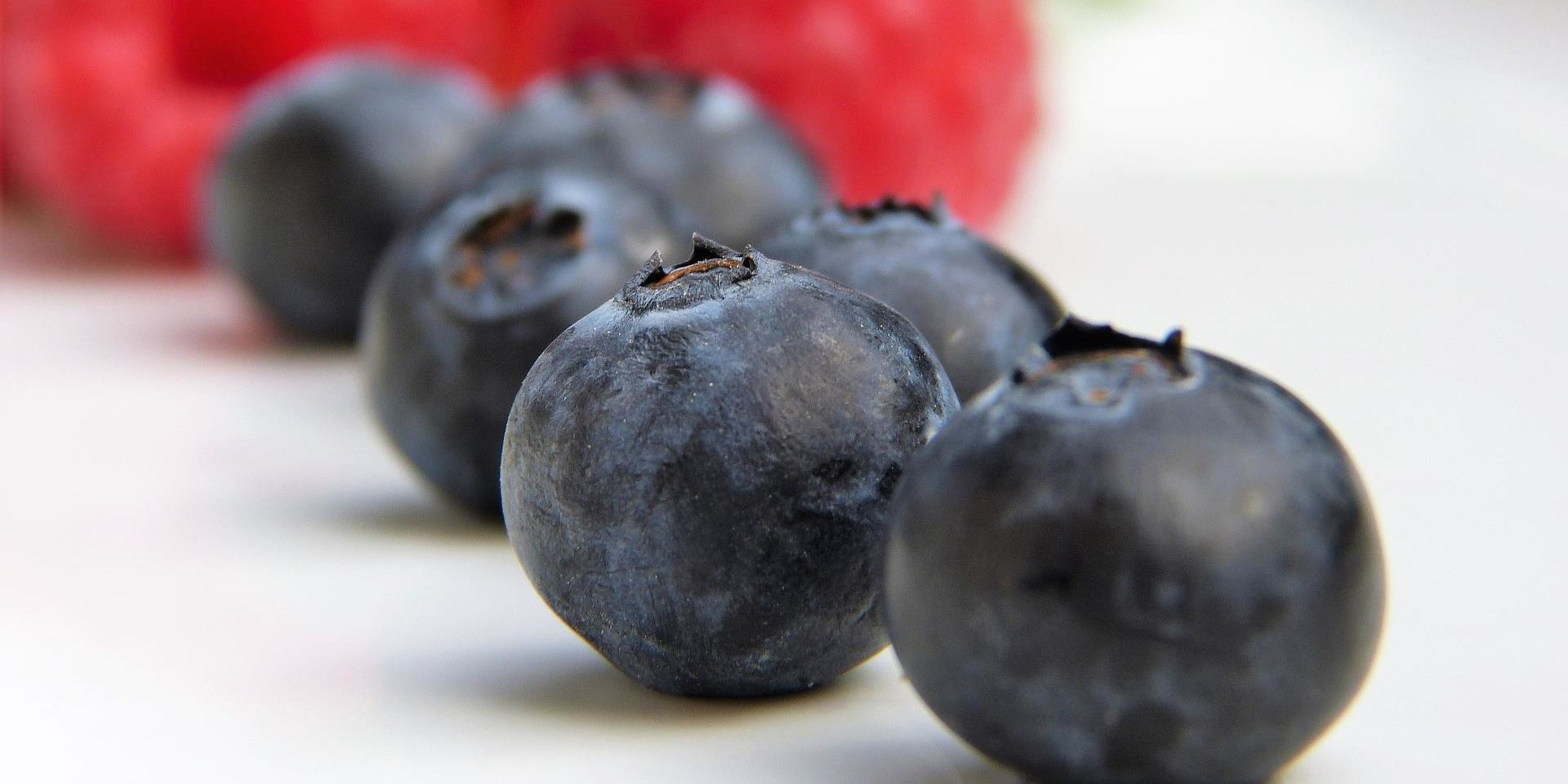 Communication on this topic: Blueberries 101: What's in Them, Their Benefits, , blueberries-101-whats-in-them-their-benefits/